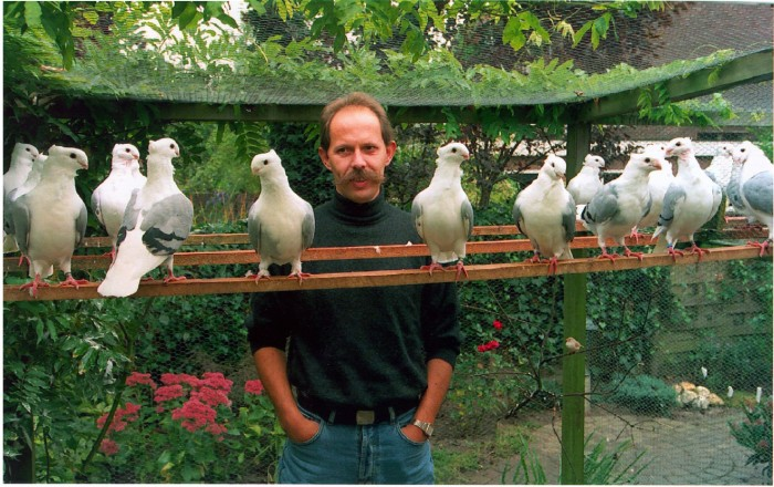 # 1995 Wierd in duivenhok